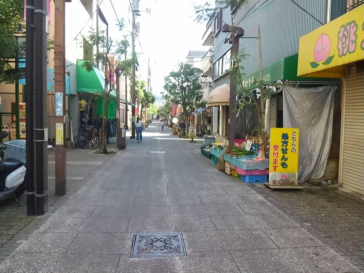 谷津バラ園の最寄り駅からの行き方の途中の商店街