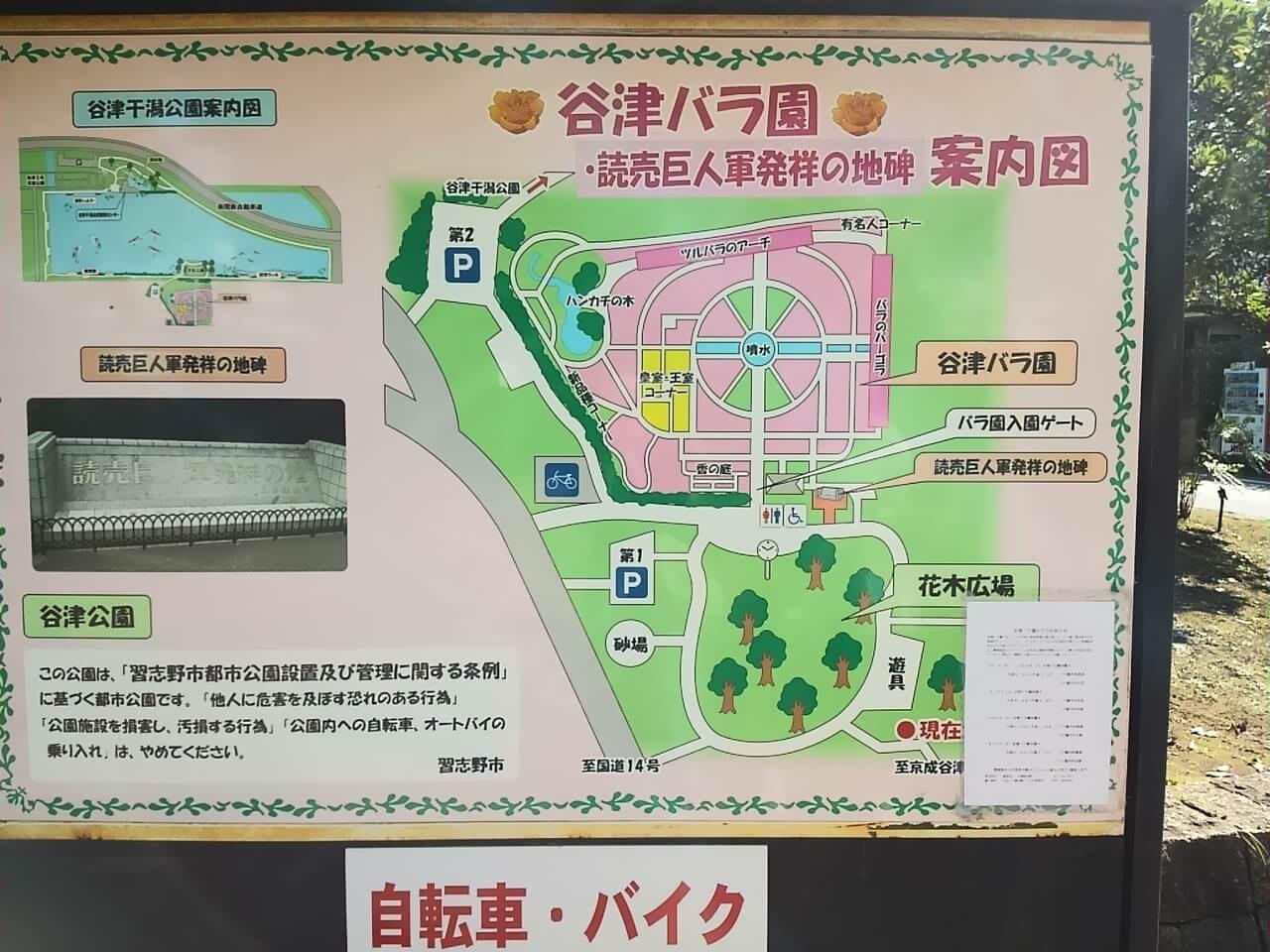 谷津バラ園への行き方地図